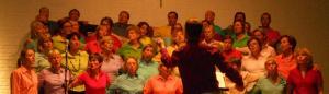8/10/2011 Concert Goldman à Bouge