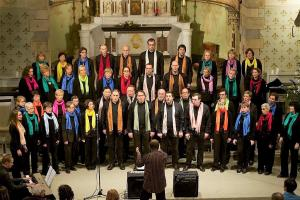 19/12/2010 Concert Goldman à Avennes